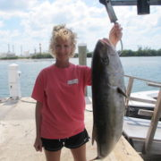Key West Amberjack